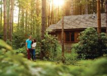 Griffon Forest Lodges York