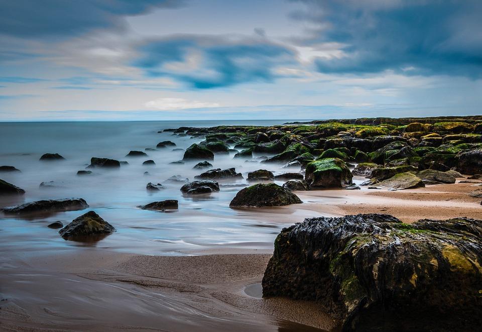 Explore Coastal Berwick