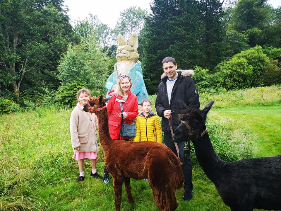 Alpaca Walking with Alpacaly Ever After