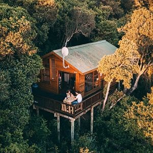 Couple having a meal and talking in the treehouse