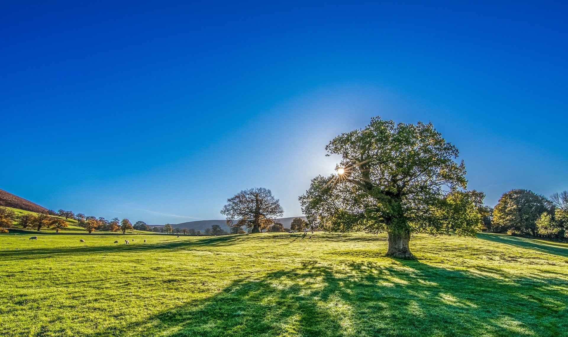 Stunning Yorkshire