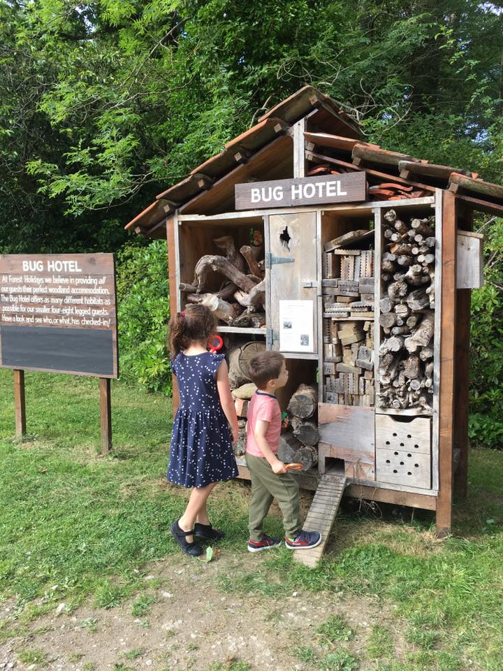 bug hotel at keldy forest