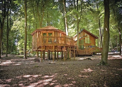 thorpe forest lodges